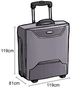 baggage-checked-baggage_3F953B6EF1EA0D52EB2975AEC